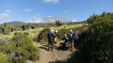 kili climbers