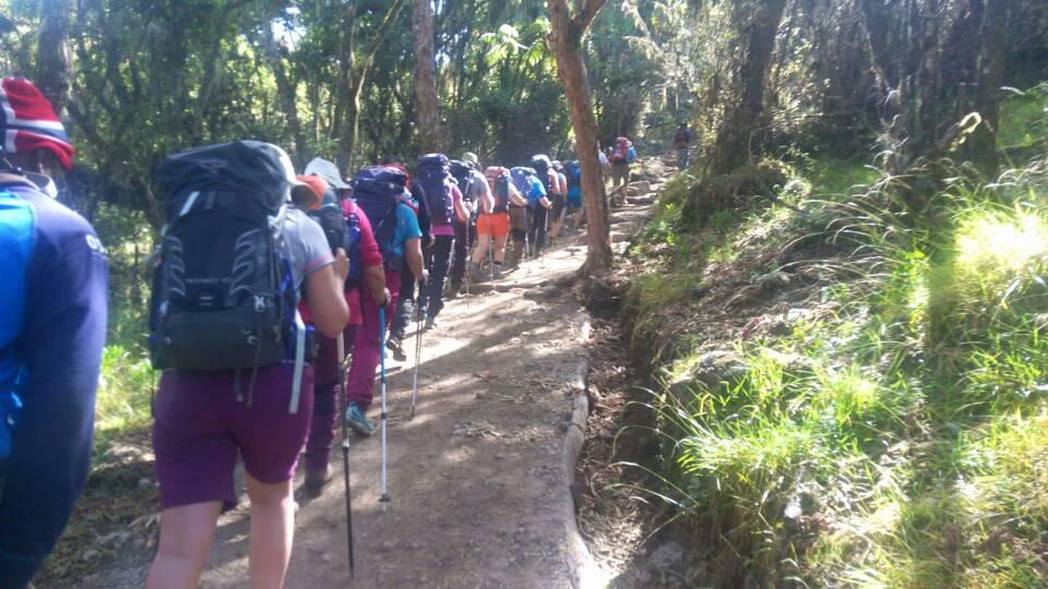 Climb Kilimanjaro Tanzania.