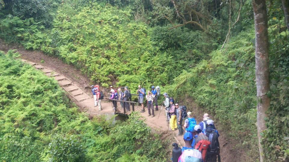 machame 7 days - kilimanjaro
